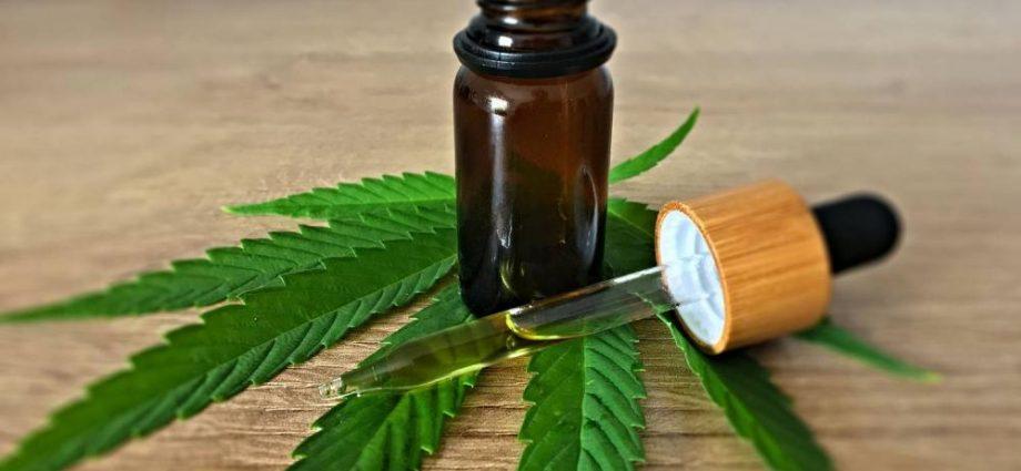 Marihuana lecznicza gdzie kupić